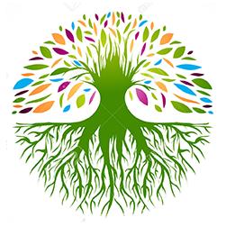 arbre valeurs pure juice